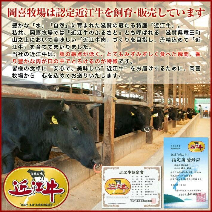 【焼肉】牛肉 総内容量1.1kgバーベキューに最適!近江牛焼肉セット【御礼・御祝・内祝】【冷凍】「滋賀の幸」|ohimiushi-okaki|10