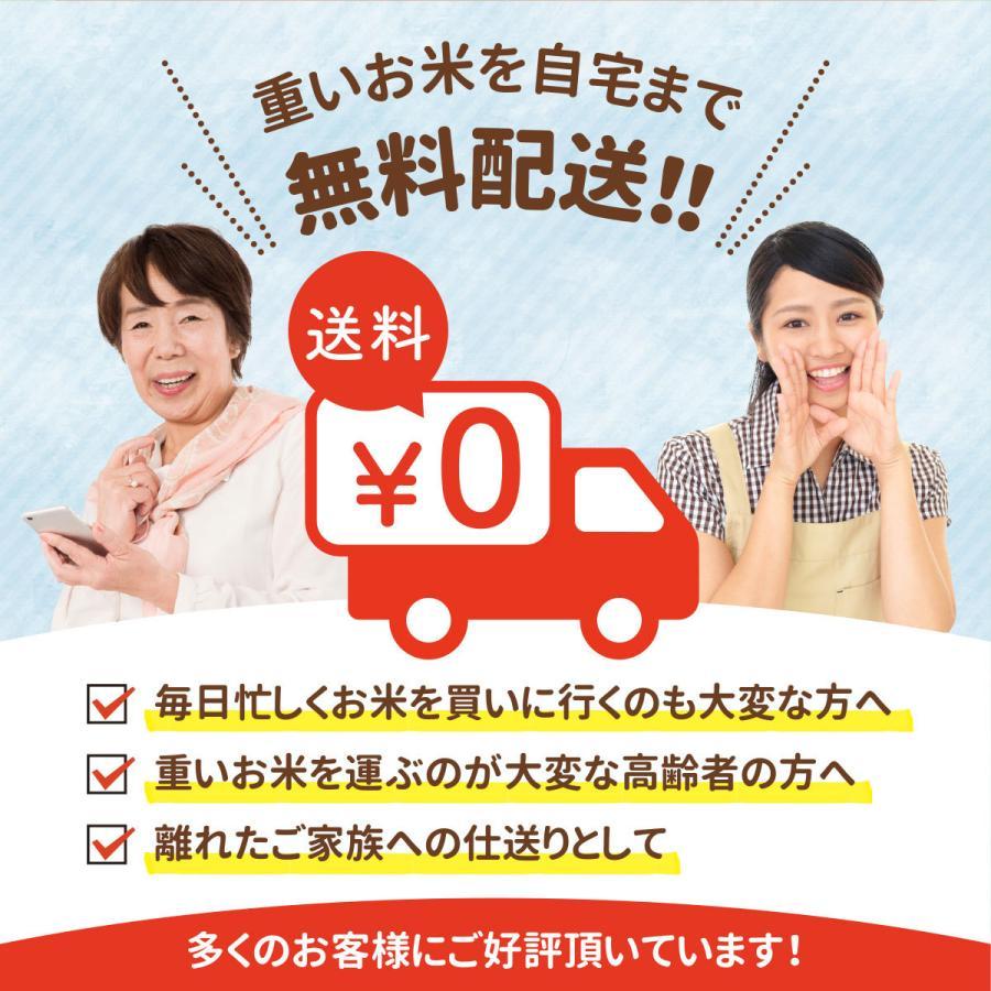 お米 10kg ( 5kg ×2袋)  送料無料 安い 白米 令和2年産 国産米 ブレンド米 家庭応援米 価格重視 質より量(限定)雑穀プレゼント ohnoshokuryou-shop 06