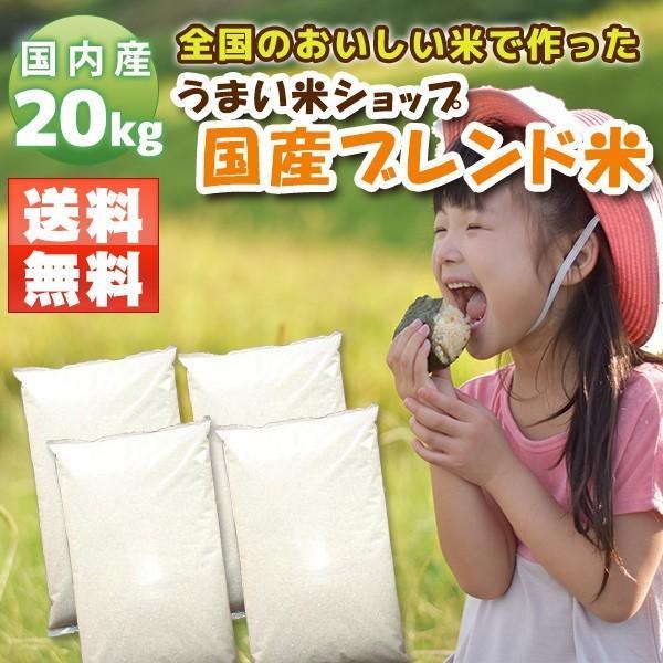 お米20kg 国産米(5kg×4) 家庭応援米 安い 価格重視 質より量をお求めの方へ ohnoshokuryou-shop
