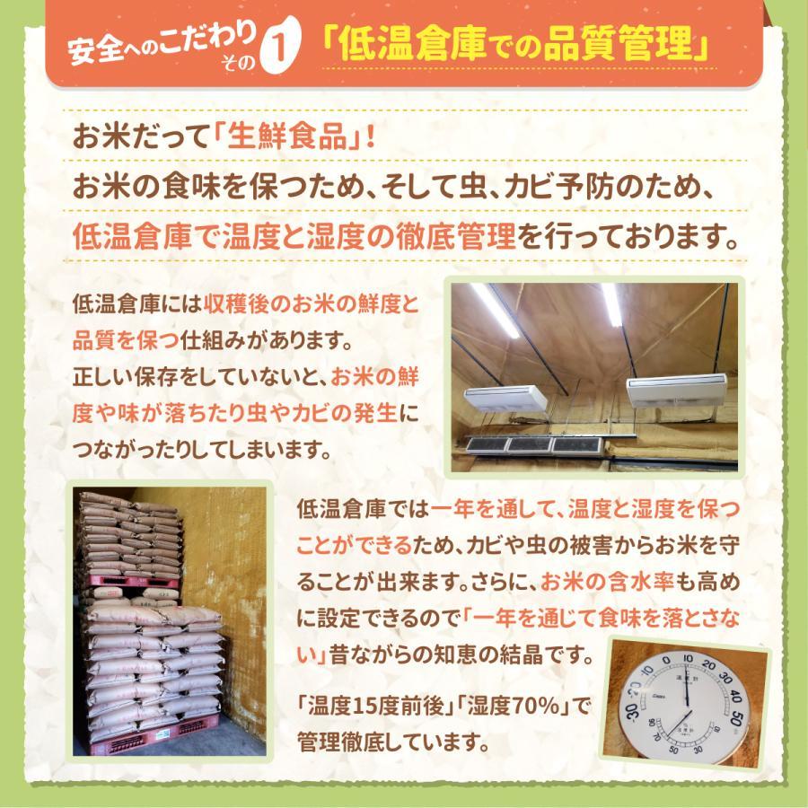 お米 30kg ( 5kg ×6袋) たべよまい 送料無料 安い 白米 令和2年産 ブレンド米 家庭応援米 価格重視 質より量(限定)雑穀プレゼント|ohnoshokuryou-shop|05