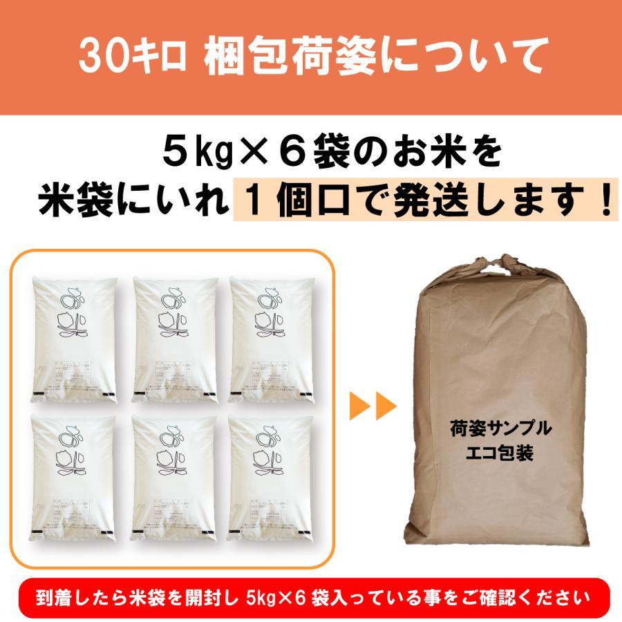米 白米 30kg (5kg×6袋) たべよまい 令和2年産 農家の お米 送料無料 ブレンド米 質より量 生活応援米(限定)雑穀プレゼント ohnoshokuryou-shop 06