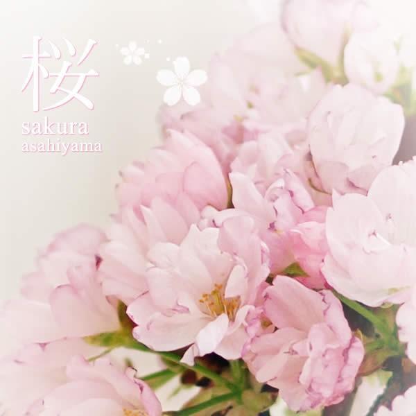母の日 2021 プレゼント ギフト 花 スイーツ 母の日 花とスイーツ ギフトランキング 盆栽 桜 鉢植え お菓子 和菓子|oimoya|03