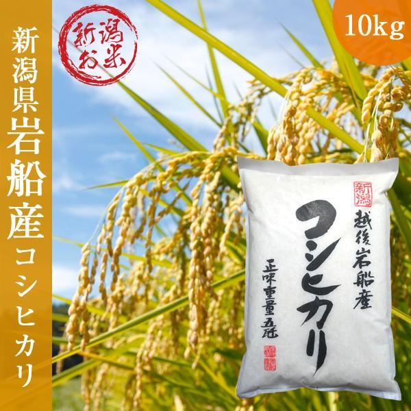 岩船産コシヒカリ10kg(5kg×2) 令和2年産 新米  コシヒカリ  新潟県 白米  ご贈答 ギフト|oishii-mizu