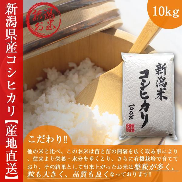 新潟県産 コシヒカリ 10kg 令和2年産 お米 白米 5kg×2袋 米蔵保管|oishii-mizu
