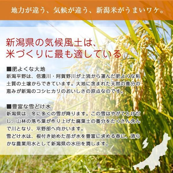 新潟県産 コシヒカリ 10kg 令和2年産 お米 白米 5kg×2袋 米蔵保管|oishii-mizu|03