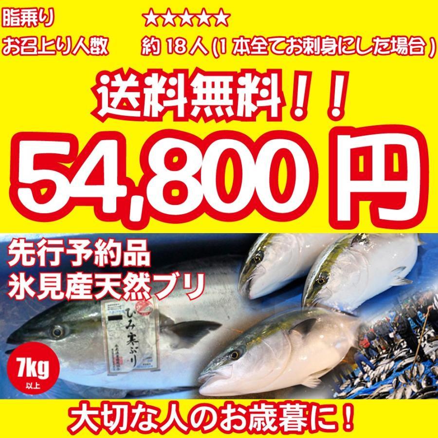 2021年入荷次第発送開始 [天然ブリの王様!美味しい魚特選海鮮ギフト]氷見産 天然寒ブリ7kg以上[国産][通常便]