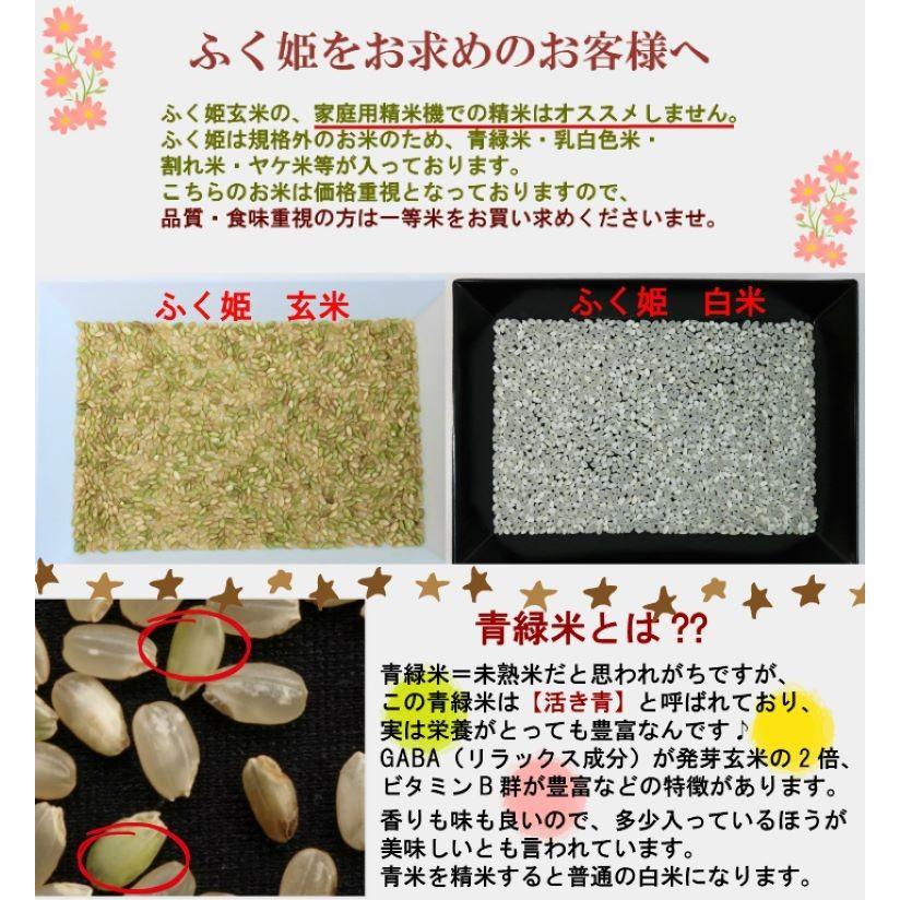 米 お米 新米入り 玄米 ブレンド米 セール 訳あり 無洗米 ふく姫 10kg 送料無料 中粒米|oisiiokomedesu|06