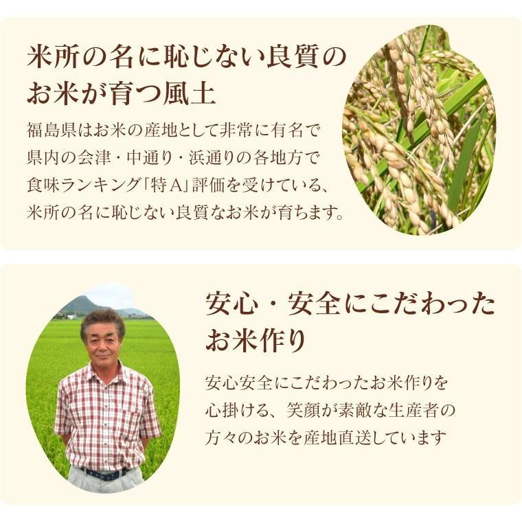 米 お米 新米入り 玄米 ブレンド米 セール 訳あり 無洗米 ふく姫 10kg 送料無料 中粒米|oisiiokomedesu|09