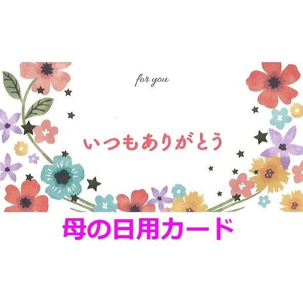 アルファベットで名入可能 傘 レディース 高級感のあるサテン生地に花柄プリント 16本骨 60cm ジャンプ傘 無料包装 母の日 誕生日カード付 送料無料 okamoto-kasa 19