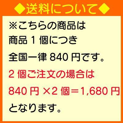 コカ・コーラ 1.5l 6本 (6本×1ケース) PET コカコーラ 炭酸飲料 Coca-Cola|okasi|02