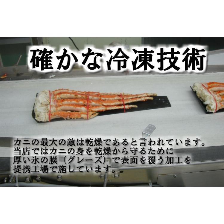 タラバガニ 脚 5L 1kg ボイル済 カニ かに 蟹 たらばがに 送料無料 okhotsk-ajikikoh 05