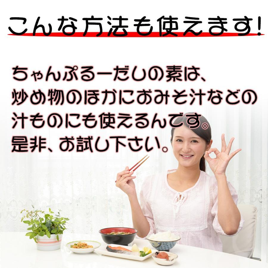 チャンプルーだしの素(粉末)4個セット okinawacompass 05