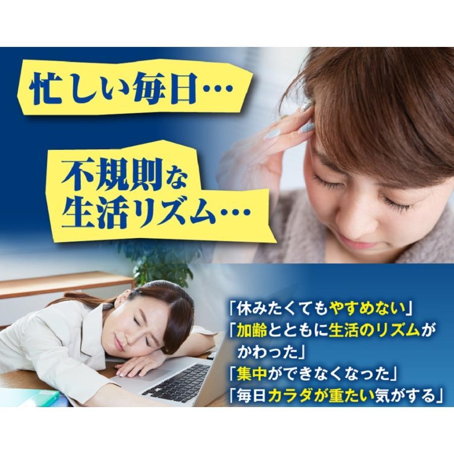 休息 サプリ [ぐっすりん] 睡眠薬 睡眠 導入剤 ではない 天然 植物 サプリメント 3粒 [送料無料 軽減税率] okinawasakata 03