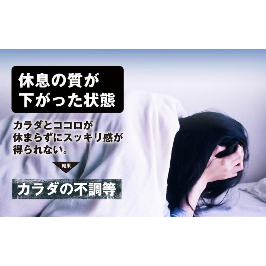 休息 サプリ [ぐっすりん] 睡眠薬 睡眠 導入剤 ではない 天然 植物 サプリメント 3粒 [送料無料 軽減税率] okinawasakata 06
