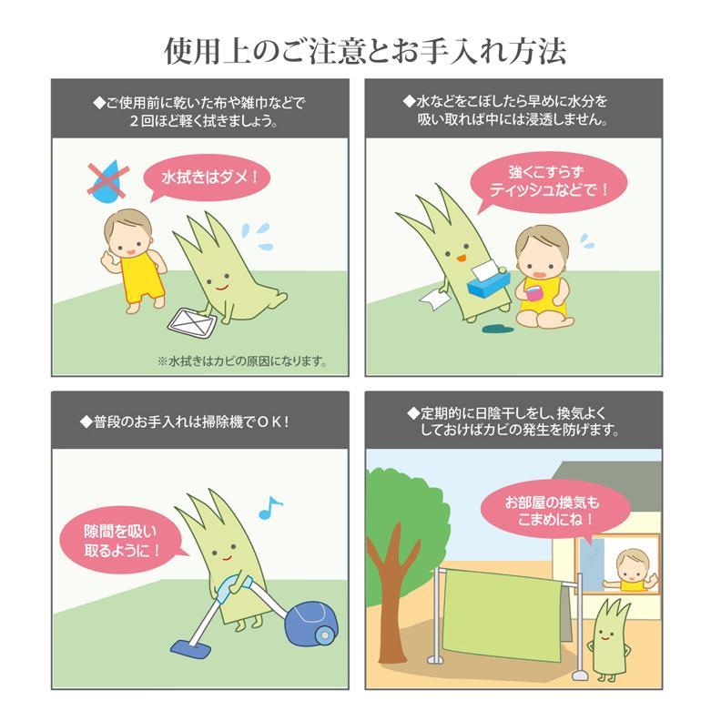 純国産 い草 上敷き カーペット 糸引織 『湯沢』 団地間2畳(約170×170cm) okitatami 11