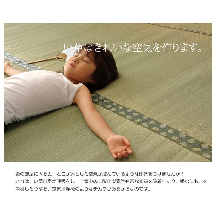 畳上敷き 国産 い草 カーペット 8畳 国産 双目織 松 団地間8畳 約340×340cm|okitatami|11