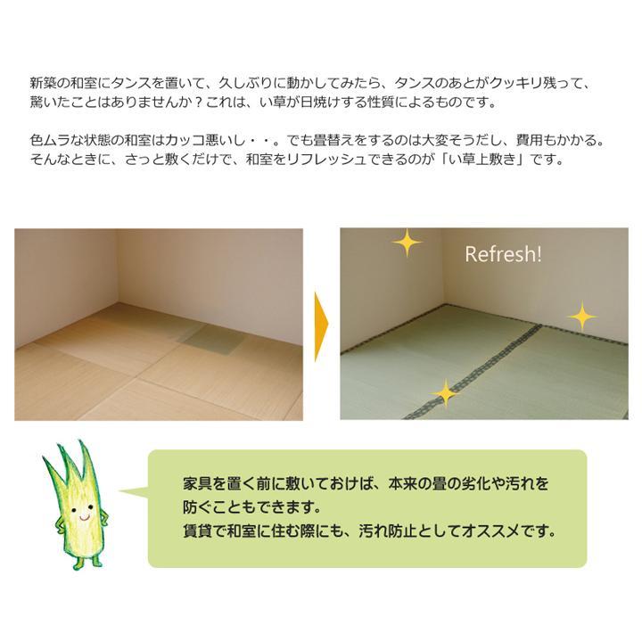 畳上敷き 国産 い草 カーペット 8畳 国産 双目織 松 団地間8畳 約340×340cm|okitatami|05