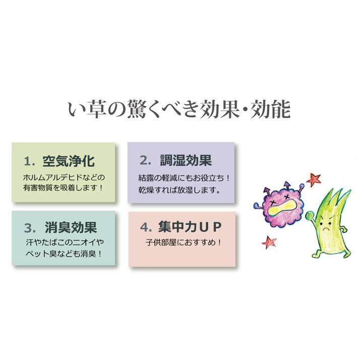 松 三六間3畳 約182×273cm 国産 い草 カーペット 双目織   畳上敷き|okitatami|13