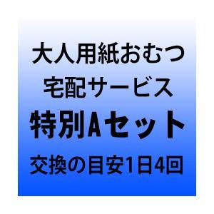大人用紙おむつ宅配サービス 特別Aセット 交換の目安1日4回 okitatami