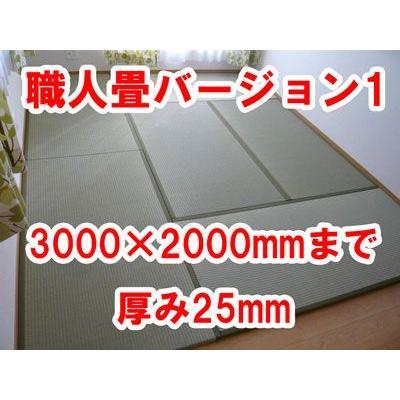 オーダーサイズ 職人畳バージョン1  置き畳 へりつき 3枚 3000×2000mmまで 厚み25mm okitatami