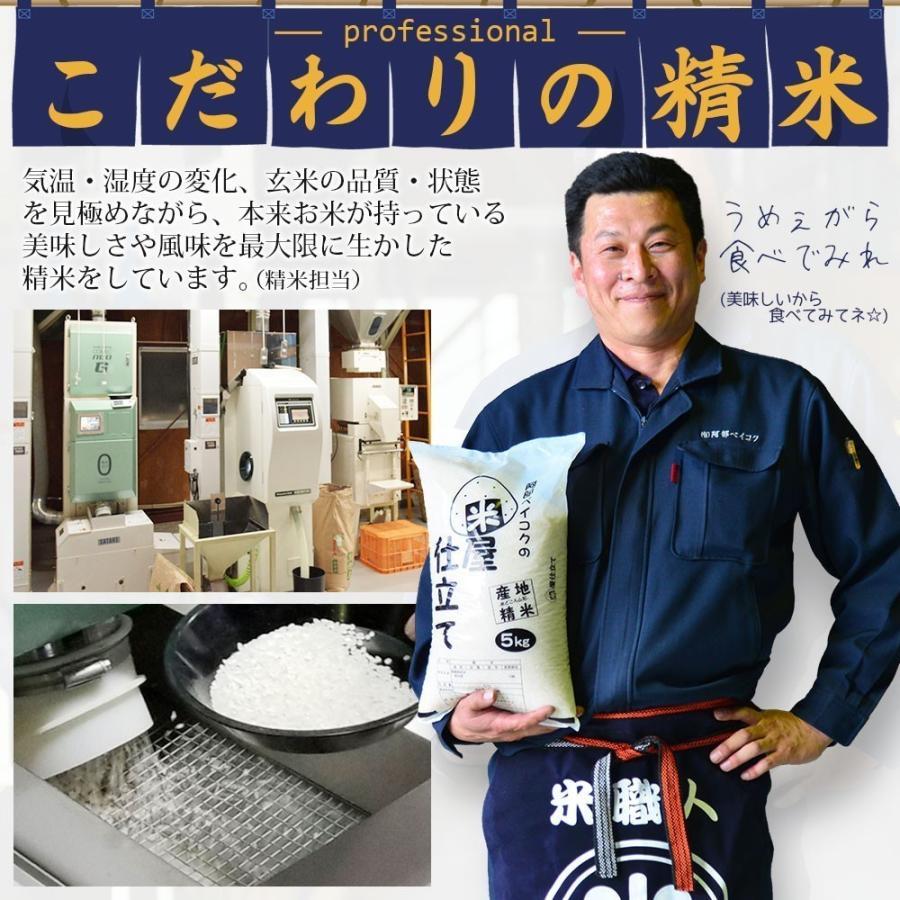 米 5kg 送料無 安い にこちゃん飯 5kg×1袋 送料無料 (一部地域を除く) 国内産 ブレンド米 お米 白米 精米 okomeabe 04