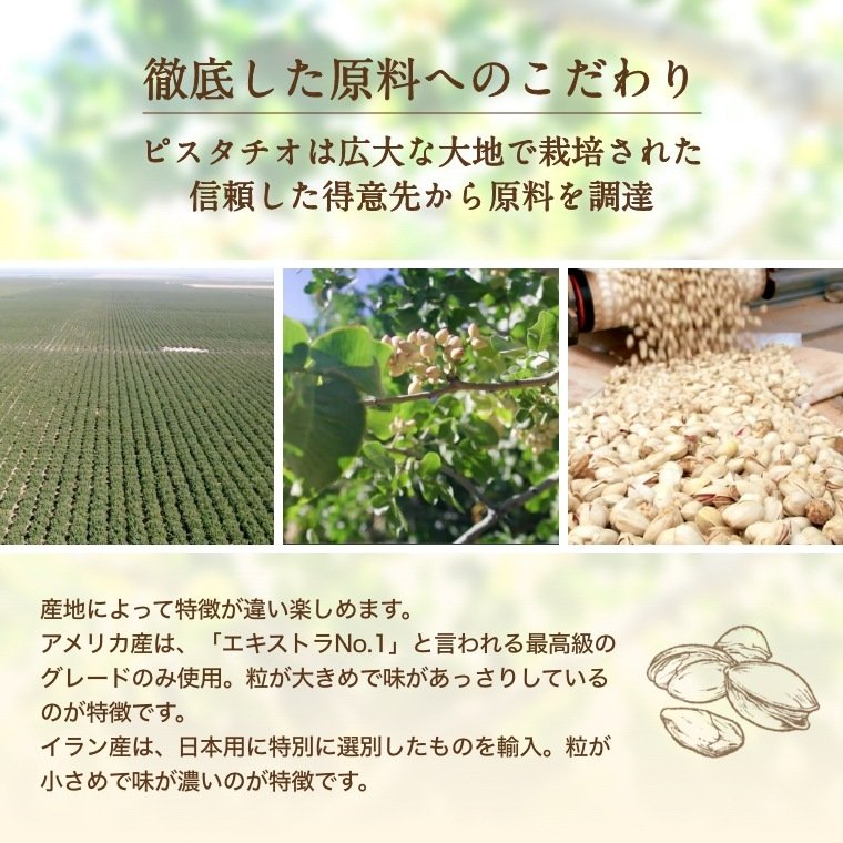 ナッツ ピスタチオ 生 500g 無塩 グルメ|omamesan|10