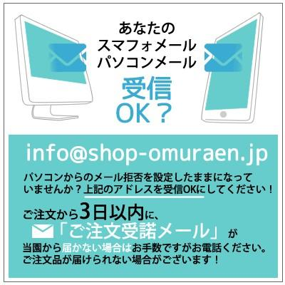 【ロールケーキ】おおむらロール 抹茶ときなこのムース仕立て 1本|omuraen|06