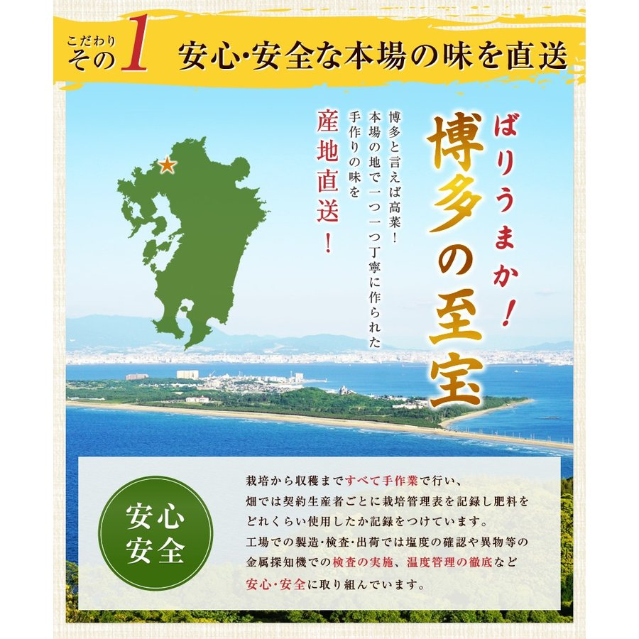 ポイント消化 国産 博多高菜漬け2種類  業務用|once-in|11