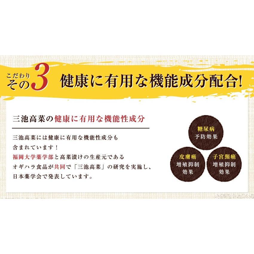 ポイント消化 国産 博多高菜漬け2種類  業務用|once-in|13