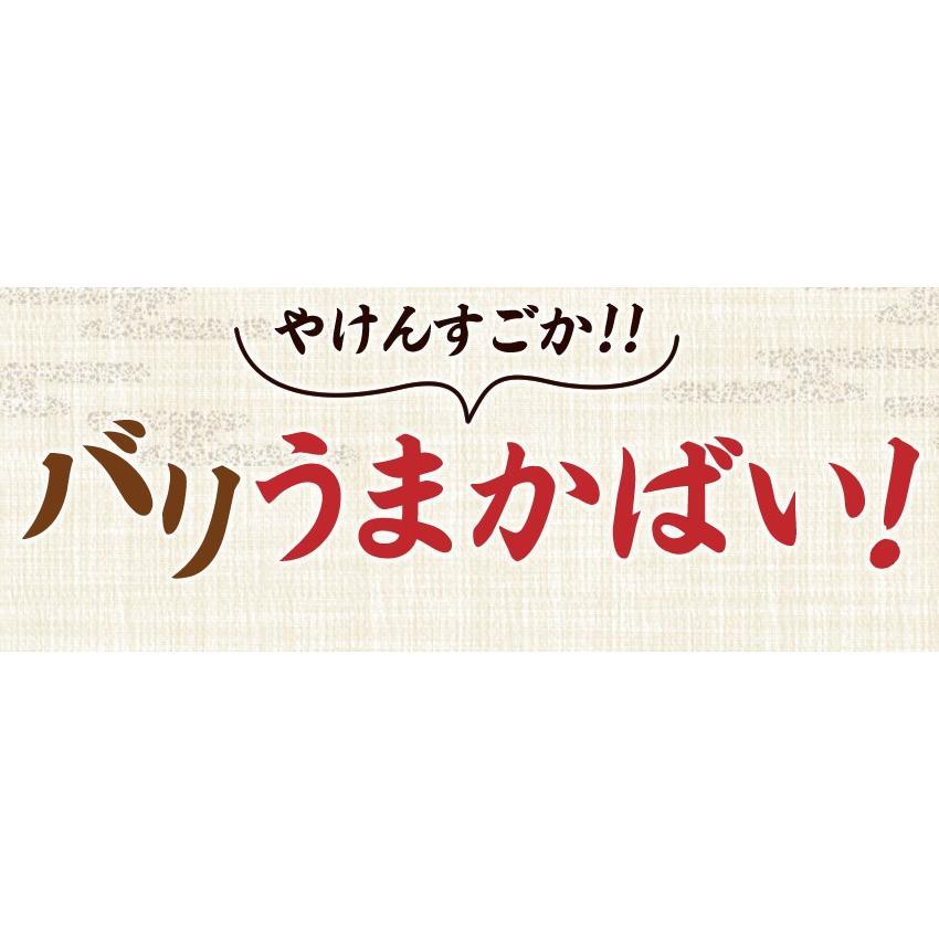 ポイント消化 国産 博多高菜漬け2種類  業務用|once-in|14