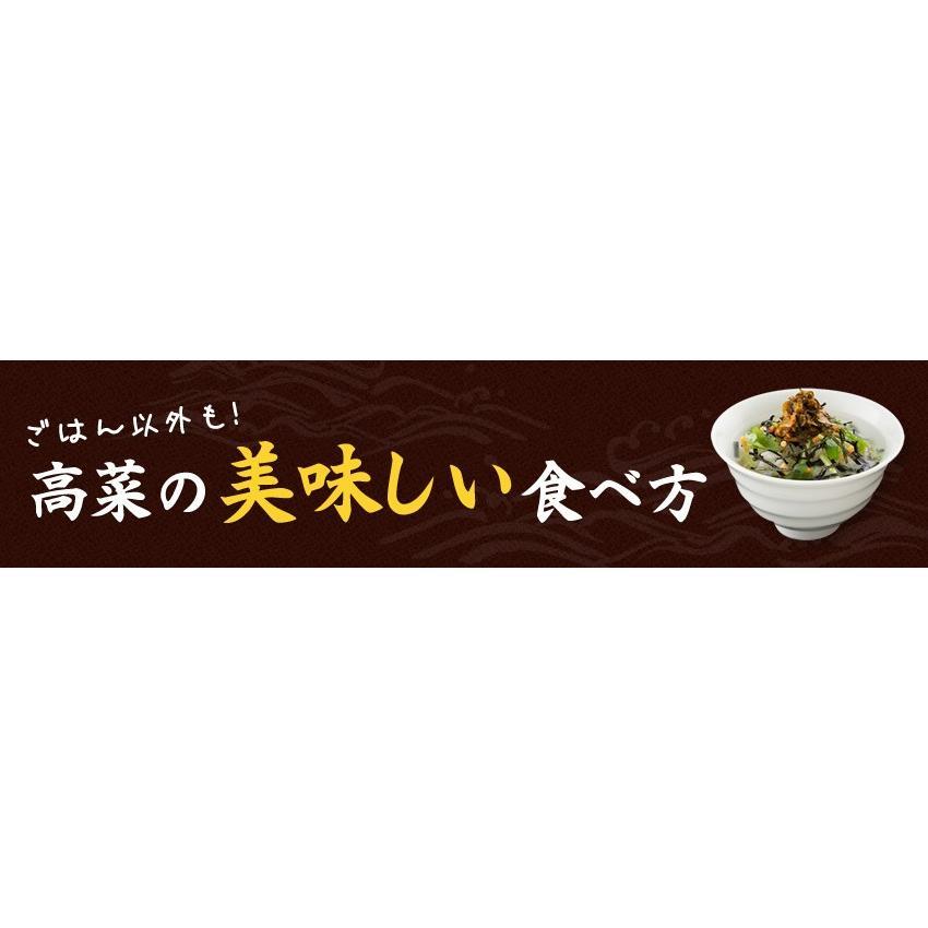 ポイント消化 国産 博多高菜漬け2種類  業務用|once-in|15