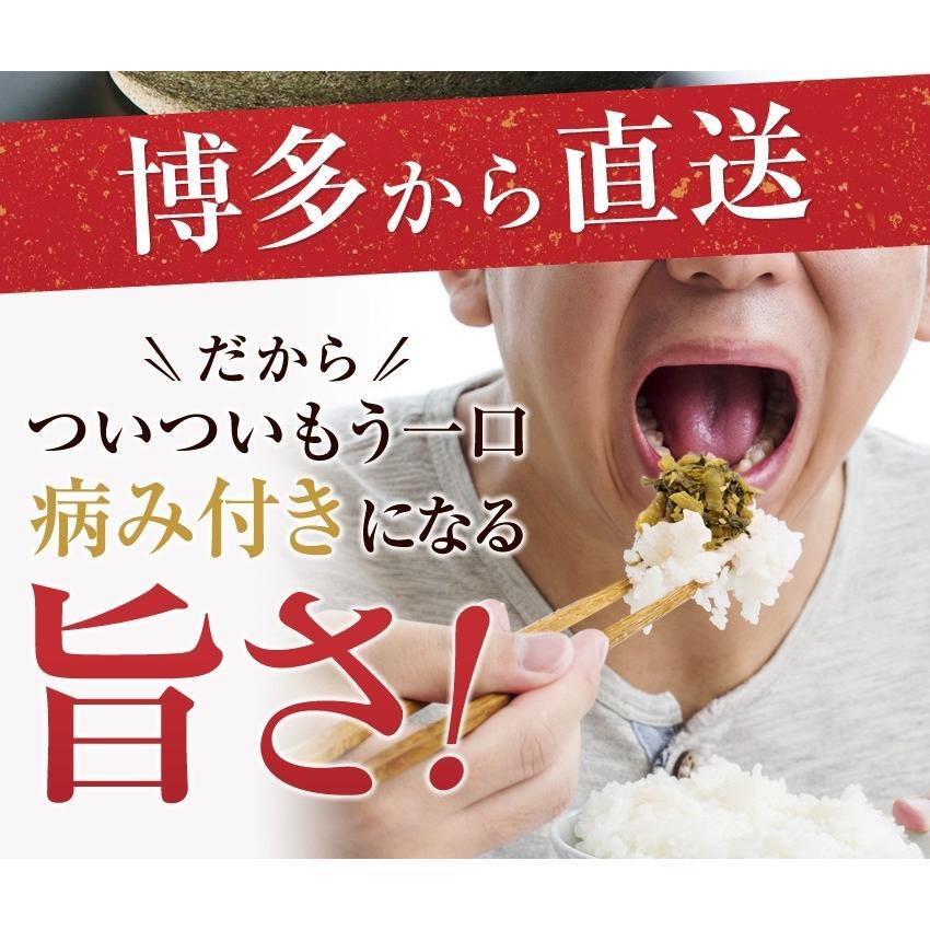 ポイント消化 国産 博多高菜漬け2種類  業務用|once-in|04