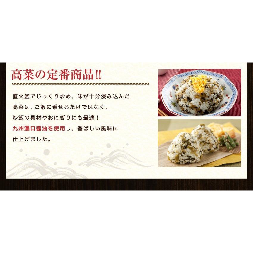 ポイント消化 国産 博多高菜漬け2種類  業務用|once-in|09