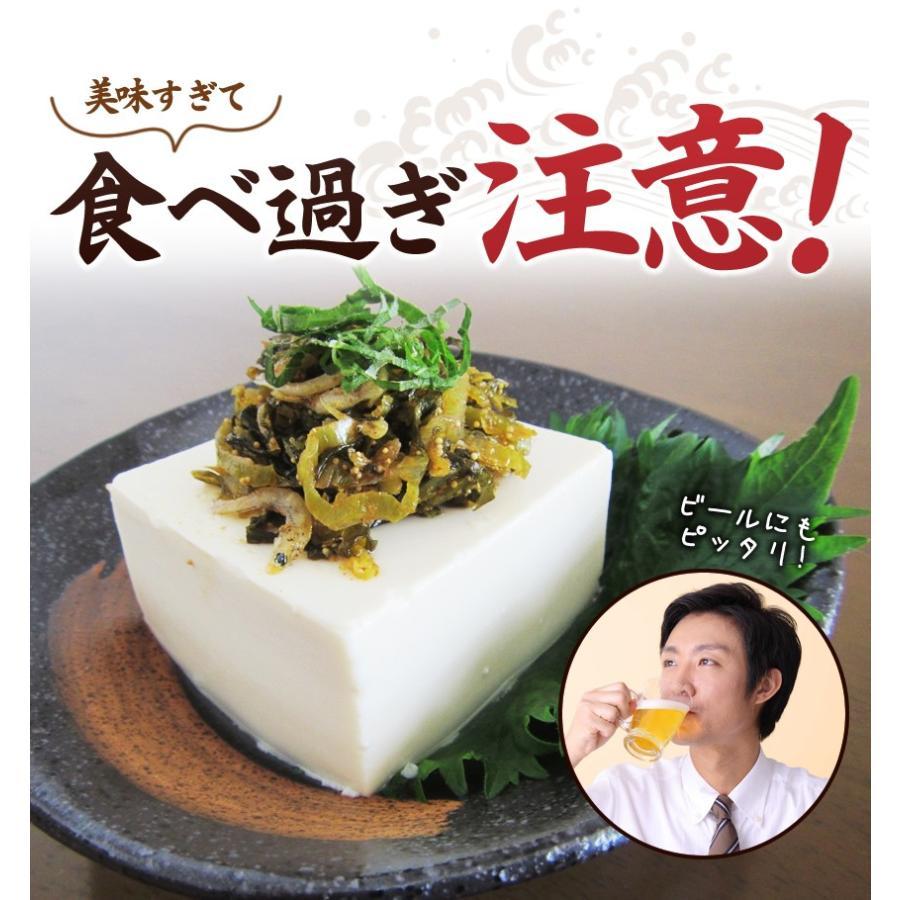 ポイント消化 国産 博多高菜漬け2種類  業務用|once-in|10