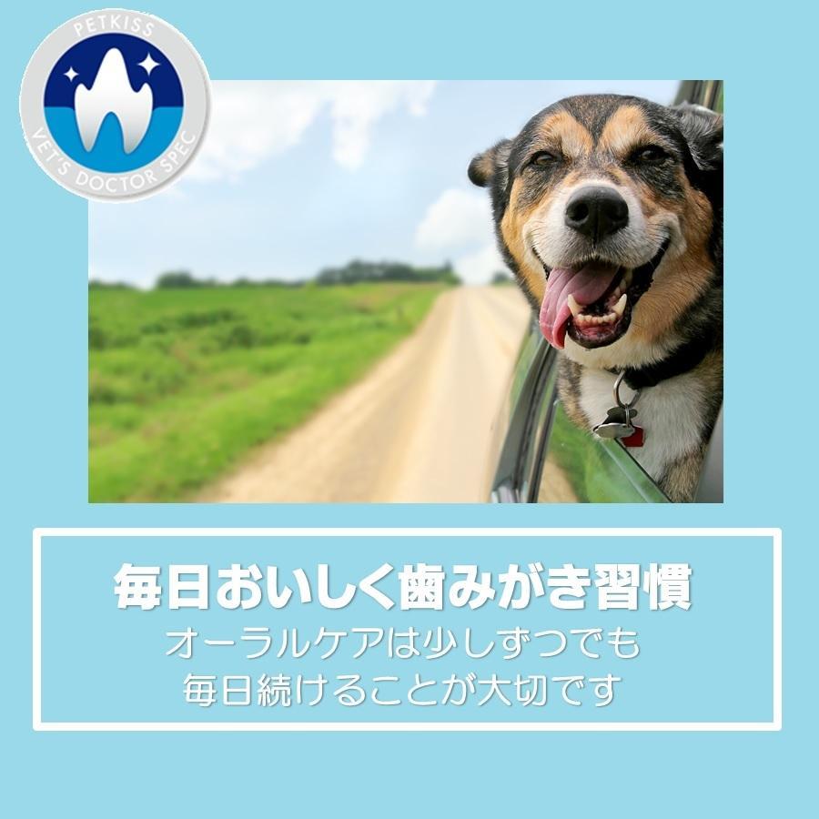 LION VDS デンタルガム 犬用 XS 14本入り(4個セット)【送料無料】【沖縄・北海道・一部特定地域は別途追加料金がかかります】 onlineshop 02