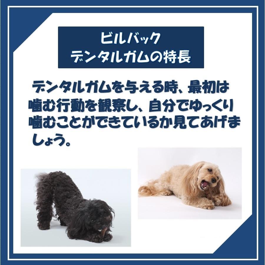 ビルバック 犬用 CETベジデントフレッシュ XS 15本入り(2個セット)【送料無料】【沖縄・北海道・一部特定地域は別途追加料金がかかります】|onlineshop|04
