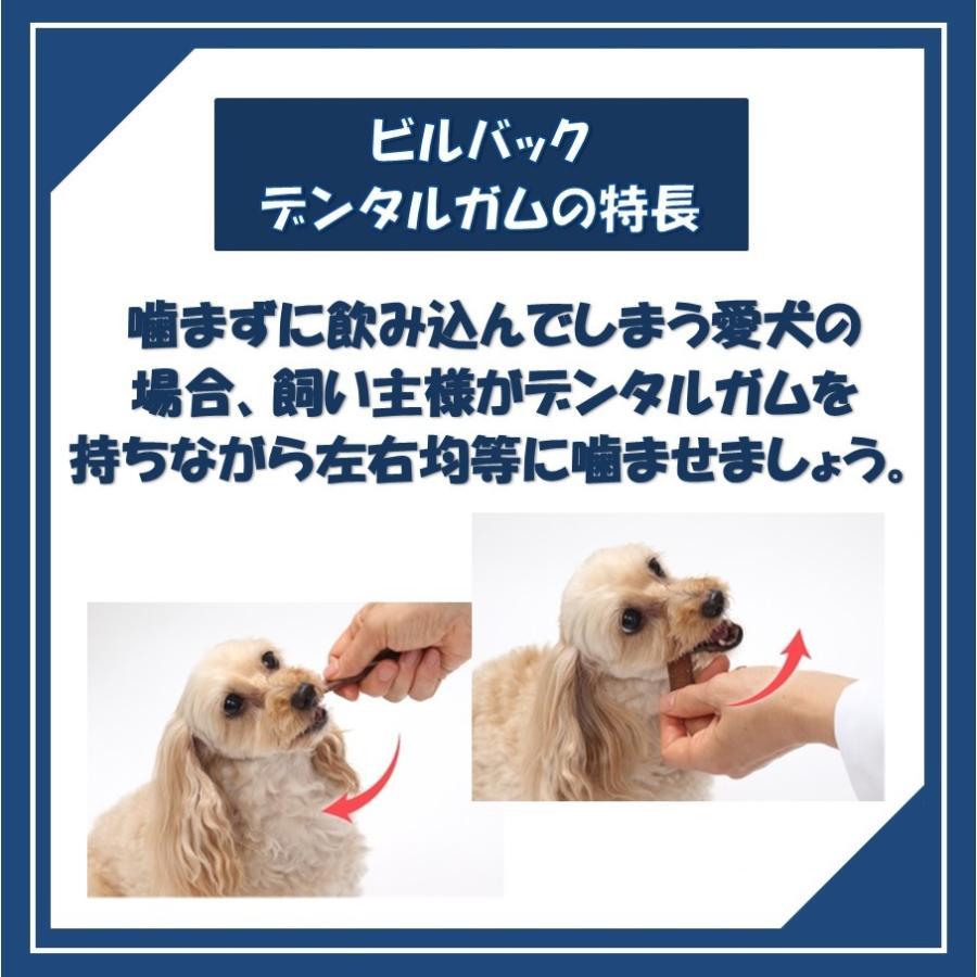ビルバック 犬用 CETベジデントフレッシュ XS 15本入り(2個セット)【送料無料】【沖縄・北海道・一部特定地域は別途追加料金がかかります】|onlineshop|05