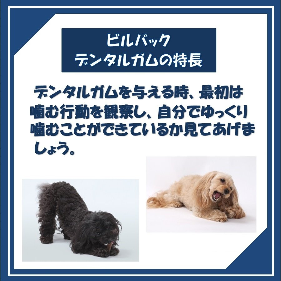 ビルバック 犬用 CETベジデントフレッシュ S 15本入り(2個セット)【送料無料】【沖縄・北海道・一部特定地域は別途追加料金がかかります】|onlineshop|04