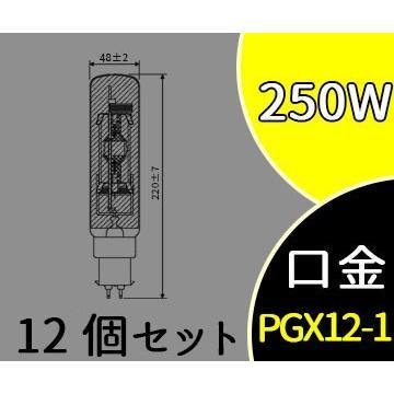 スカイビーム 拡散形 片口金 PG形 MT250FE-W-PG/N (MT250FEWPGN) 12個セット パナソニック