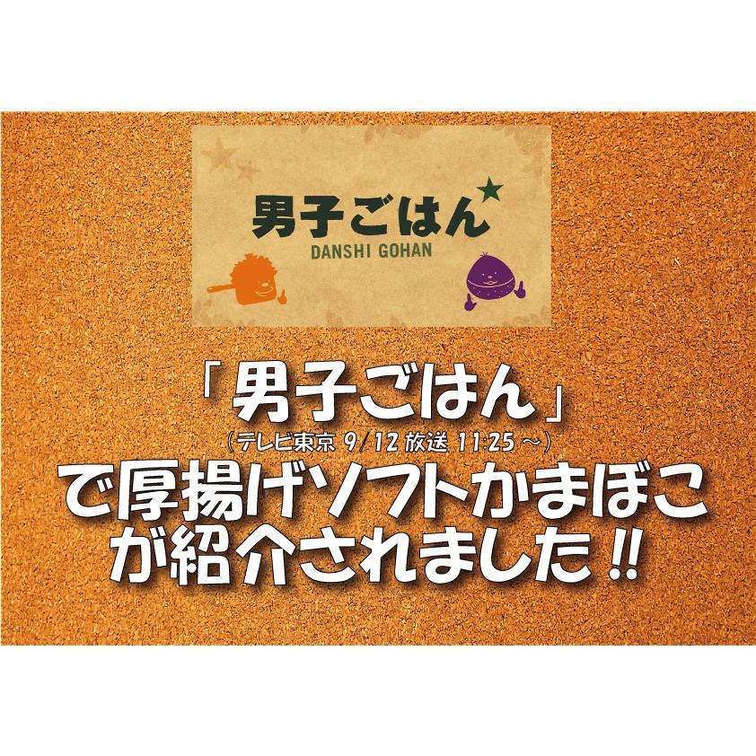 おのざきの厚揚ソフトかまぼこ 1袋500g12本入 onozaki 04