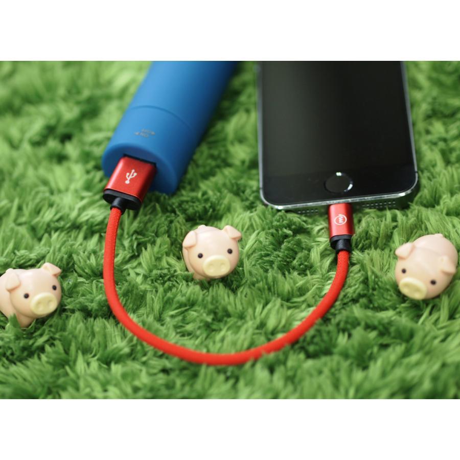 再入荷 Apple Lightning USBケーブル ナイロンキャンバス編み 20cm ライトニング 高耐久 iPhone iPad iPod など対応 全4色 m.a.h onpro-japan-direct 09