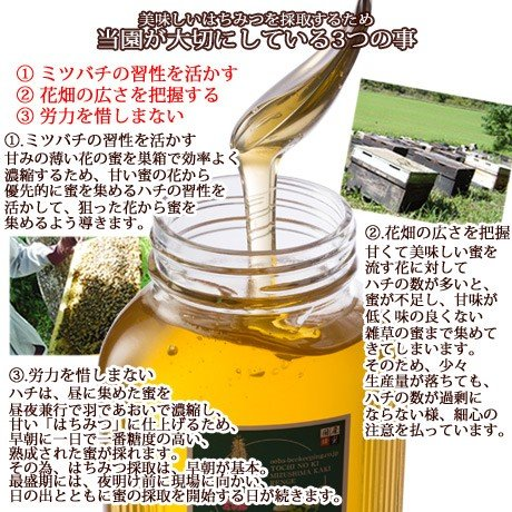 トチの木ハチミツ500g ooba-beekeeping 03