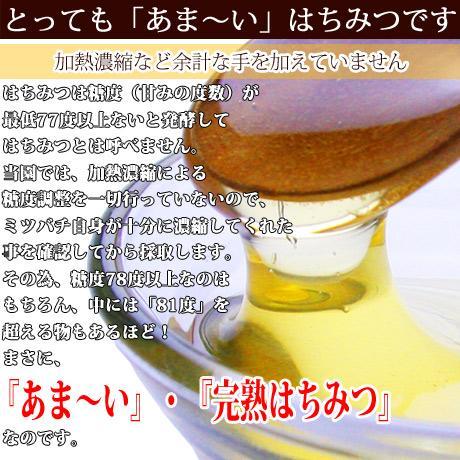 藤ハチミツ95g ooba-beekeeping 02