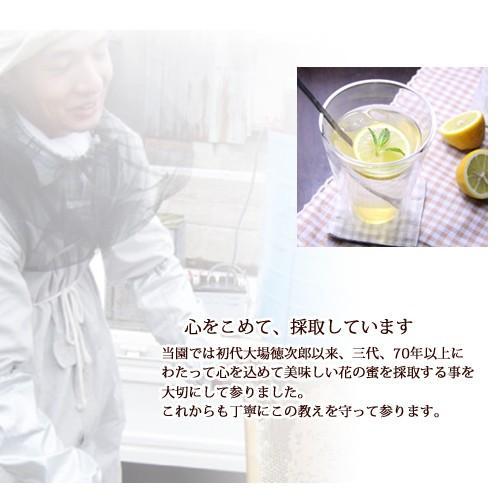 藤ハチミツ95g ooba-beekeeping 04