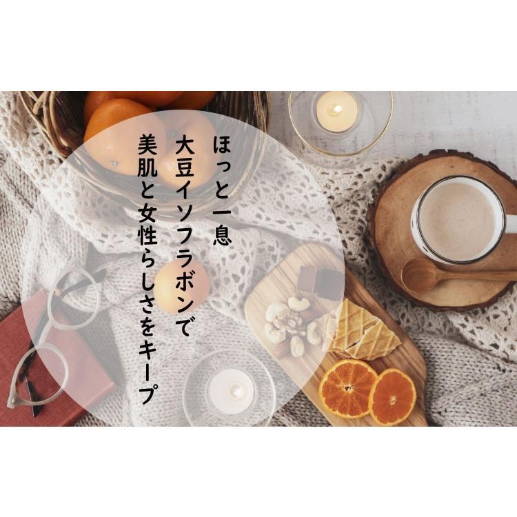 きなココア  12g×30袋 きな粉ドリンク ココア・オリゴ糖・ショウガパウダー入り|ookawa-syokuhin01|02