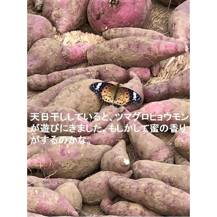 【今年最後の10袋限定】この冷凍焼き芋で感動してください。こんな焼き芋食べたことない! あなたを笑顔&元気にする冷凍焼き芋(紅はるか)400g 家庭用  |oomugiya-isakoubou|20