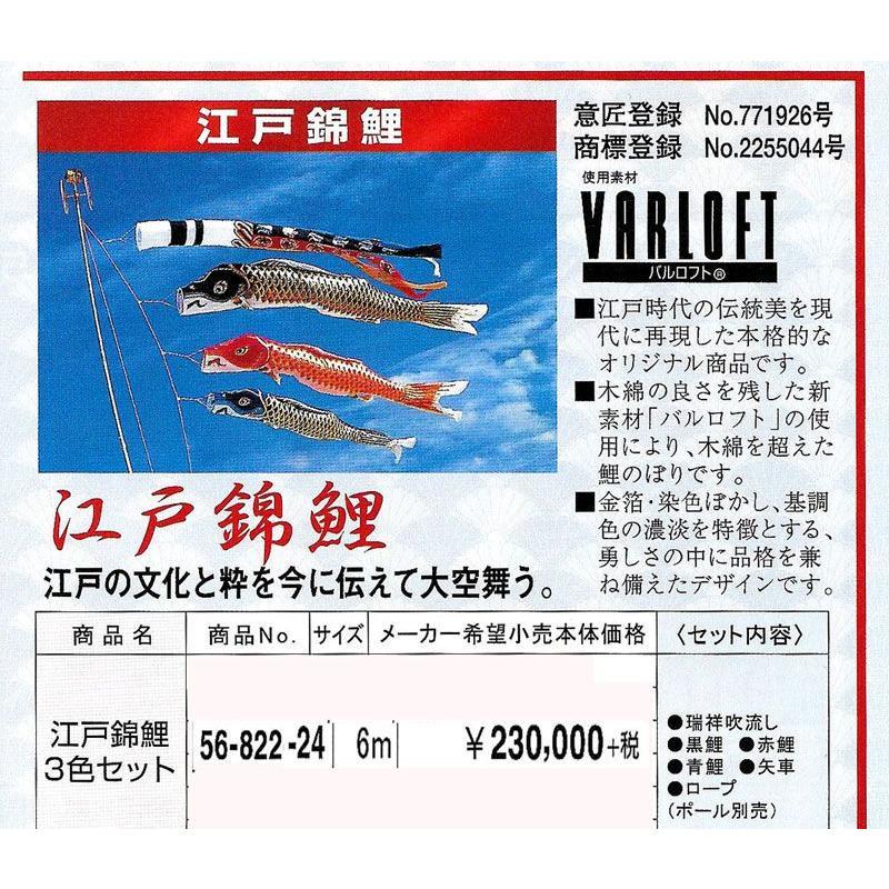 江戸錦鯉3色セット サイズ6m