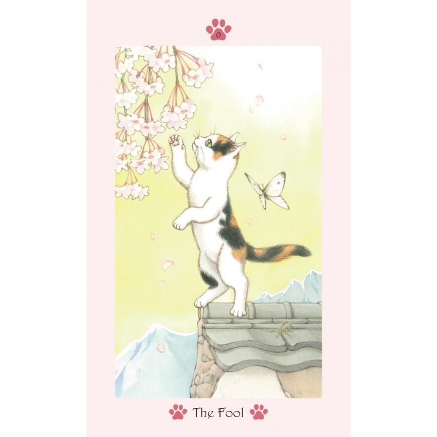Cat Paw Tarot 〜キャット・パウ・タロット〜 oracle-tarot 02