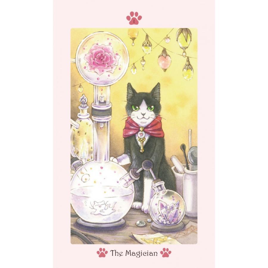 Cat Paw Tarot 〜キャット・パウ・タロット〜 oracle-tarot 03