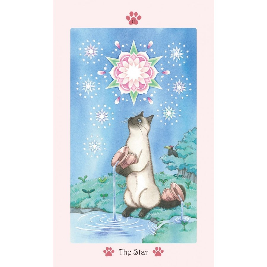 Cat Paw Tarot 〜キャット・パウ・タロット〜 oracle-tarot 05